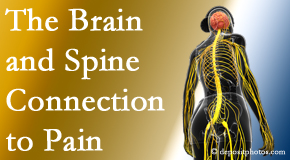 Chiropractic Care looks at the connection between the brain and spine in back pain patients to better help them find pain relief.