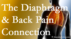 Chiropractic Care knows the relationship of the diaphragm to the body and spine and back pain.