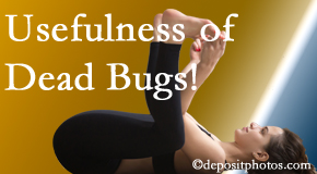Chiropractic Care finds dead bugs quite useful in the healing process of West Palm Beach back pain for many chiropractic patients.