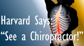 Chicago chiropractic for back pain relief urged by Harvard