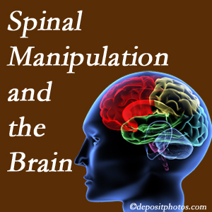 Chiropractic Care [shares research on the benefits of spinal manipulation for brain function.