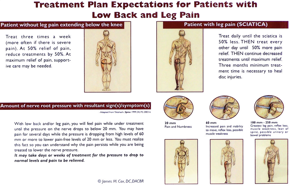 physiotherapy exercise for low back pain pdf
